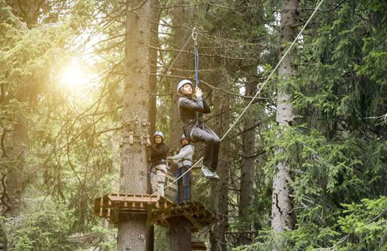 Zip Lines in Seattle und West-Washington / Washington