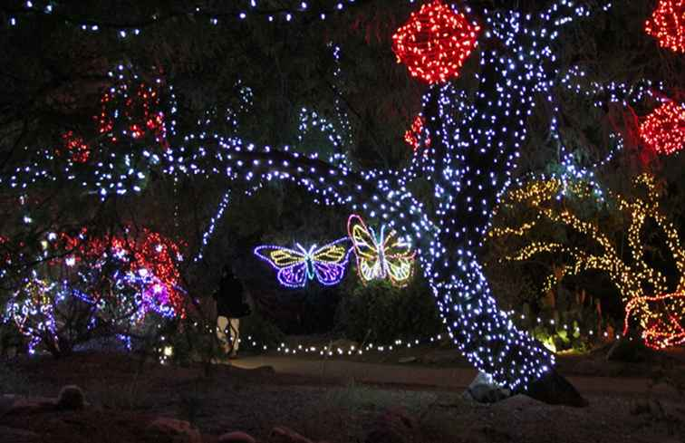 ZooLights Holiday Display in de Phoenix Zoo / Arizona